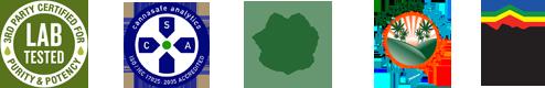 labs-logo